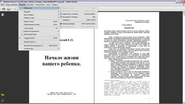 Меню Adobe Reader