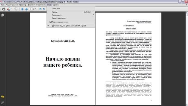 новое окно для просмотра документа Adobe Reader